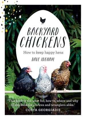 Backyard Chickens How to keep happy hens