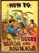 How to Stuff Birds and Animals: A Valuable Book Giving Instruction in Collecting, Preparing, Mounting, and Preserving Birds, Animals by Aaron A. Warford