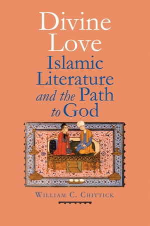 Divine Love Islamic Literature and the Path to God