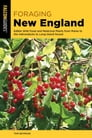 Foraging New England Cover Image