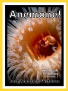 Just Sea Anemone Photos! Big Book of Photographs & Pictures of Under Water Ocean Sea Anemones, Vol. 1 by Big Book of Photos