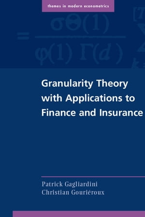 Granularity Theory with Applications to Finance and Insurance