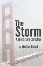 The Storm by Thaddeus Burr