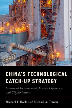 China's Technological Catch-Up Strategy Industrial Development,  Energy Efficiency,  and CO2 Emissions