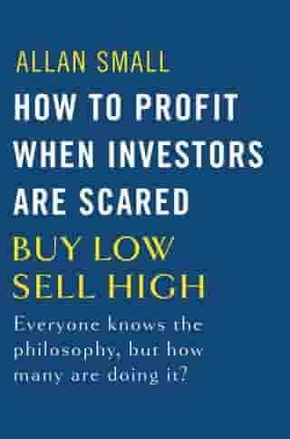 How to Profit When Investors Are Scared: Buy Low, Sell High by Allan Small