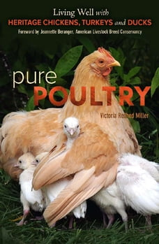 Pure Poultry: Living Well with Heritage Chickens,Turkeys and Ducks
