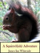 A Squirrel (ish) Adventure by James Ian whiteside