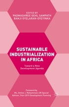 Sustainable Industrialization in Africa: Towards a New Development Agenda