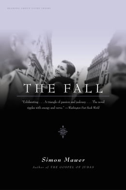 Book The Fall: A Novel by Simon Mawer