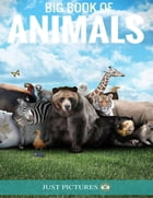 Big Book of Animals by Just Pictures