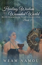 Healing Wisdom for a Wounded World: My Life-Changing Journey Through a Shamanic School (Book 4) by Weam Namou