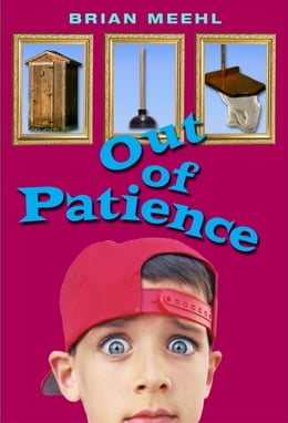 Book Out of Patience by Brian Meehl