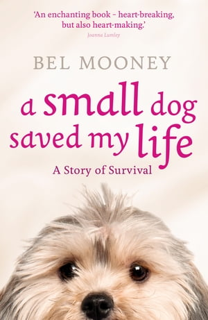 A Small Dog Saved My Life