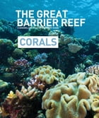 The Great Barrier Reef - Corals: A Queensland Museum Discovery Guide by Gregory Czechura