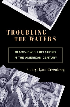Troubling the Waters Black-Jewish Relations in the American Century