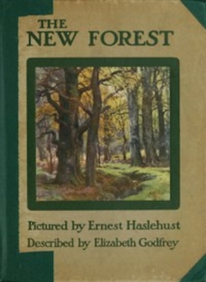 The New Forest (Illustrated)
