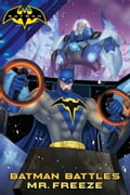 Batman Battles Mr. Freeze b5dc3886-7128-417e-b20a-dc9420f428a5