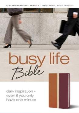 Book Busy Life Bible: 60-Second Thought Starters on Topics That Matter to You by Various Authors