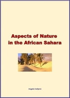 Aspects of Nature in the African Sahara by Angelo Heilprin