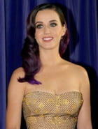 The Unofficial Katy Perry Biography by Cathy Kulkarni