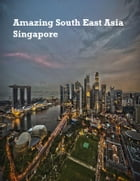Amazing South East Asia: Singapore by V.T.