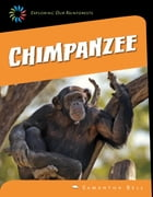 Chimpanzee by Samantha Bell