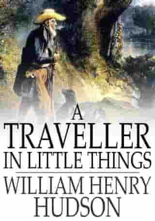 A Traveller in Little Things by William Henry Hudson