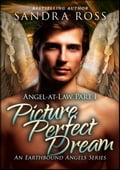 1230000207591 - Sandra Ross: Picture Perfect Dream: Angel-at-Law 1 - كتاب
