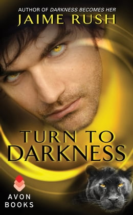 Book Turn to Darkness: A Novella by Jaime Rush