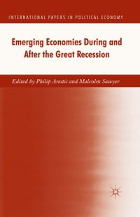 Emerging Economies During and After the Great Recession