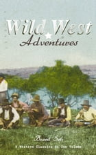 WILD WEST ADVENTURES – Boxed Set: 9 Western Classics in One Volume (Illustrated): The Girl at the Halfway House, The Law of the Land, Heart's Desire,  by Emerson Hough