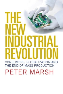 Book The New Industrial Revolution by Peter Marsh