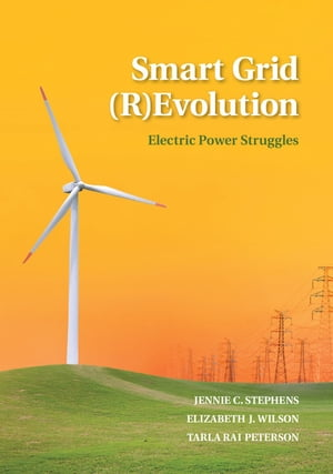 Smart Grid (R)Evolution Electric Power Struggles