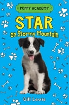 Star on Stormy Mountain