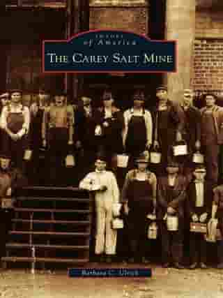 The Carey Salt Mine by Barbara C. Ulrich