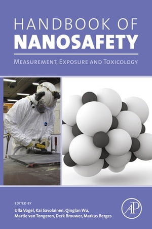 Handbook of Nanosafety Measurement,  Exposure and Toxicology