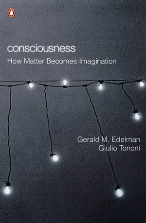 Consciousness How Matter Becomes Imagination