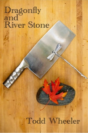 Dragonfly and River Stone by Todd Wheeler