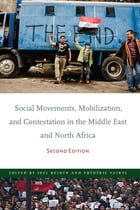 Social Movements, Mobilization, and Contestation in the Middle East and North Africa: Second Edition by Joel Beinin
