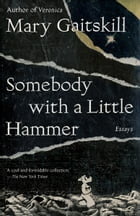 Somebody with a Little Hammer Cover Image