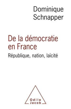 De la démocratie en France: République, nation, laïcité by Dominique Schnapper