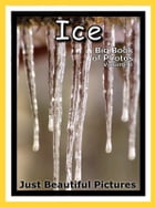 Just Ice Photos! Big Book of Photographs & Pictures of Ice, Vol. 1 by Big Book of Photos