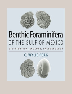 Benthic Foraminifera of the Gulf of Mexico Distribution,  Ecology,  Paleoecology