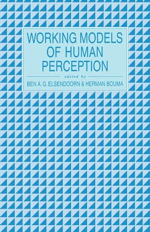 Working Models of Human Perception