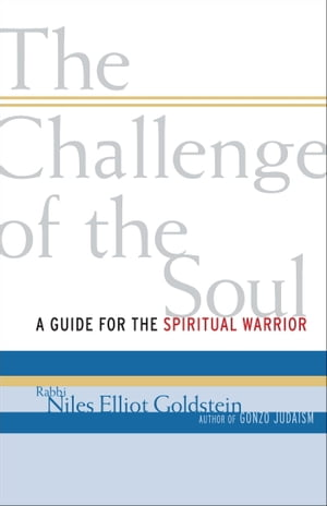 The Challenge of the Soul A Guide for the Spiritual Warrior