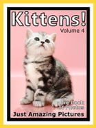 Just Kitten Photos! Big Book of Photographs & Pictures of Baby Cats & Cat Kittens, Vol. 4 by Big Book of Photos