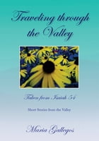 Traveling Through the Valley: Short Stories from the Valley by Maria Gallegos