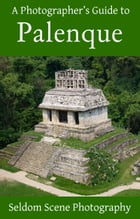 A Photographer's Guide to Palenque by Seldom Scene Photography