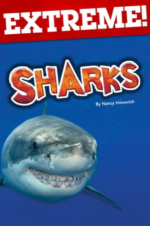 Extreme: Sharks by Nancy Honovich