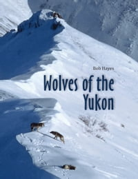 Wolves of the Yukon